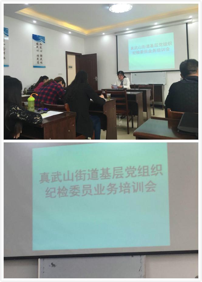 公司领导参加真武山党组织纪检委员培训会